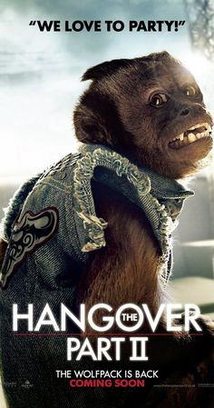 Pictures & Photos from The Hangover Part II (2011) - IMDb