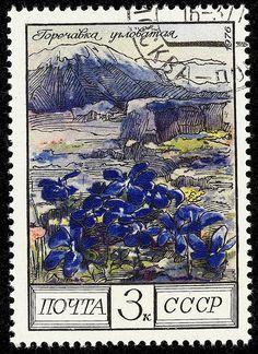 stamp cccp 1976 4547 | 1976, 17. Nov. Blumen des Kaukasus. E… | Flickr
