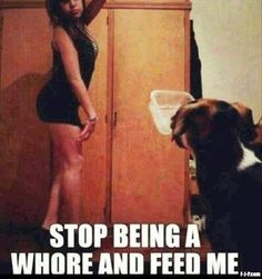 Stop being a whore and feed me.