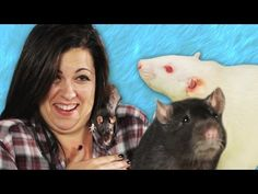 People Met Pet Rats For The First Time And Lost Their Damn Minds