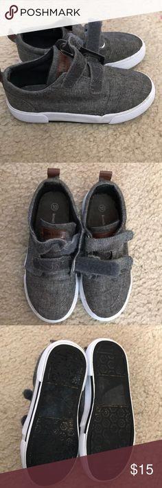 Niños Koala Tamaño De Los Zapatos Del Niño De 6
