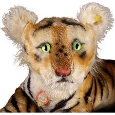Rare Large '50s Steiff Reclining Tiger Cub All ID Magic Eyes!