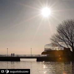 #Repost @augustobuzzeo  Trasimeno lake. @augustobuzzeo  #art #beautyful #cute #instagram #instadaily #lake #loveit #nikon #nikontop #nikonitalia #nikonphotography #nikonphotographer #portraitphotography #sun #sunset #trasimeno #trasimenolake #underwaterphotographer