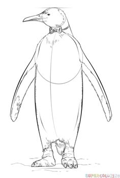 How To Draw Club Penguin