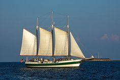 http://fineartamerica.com/featured/schooner-by-fort-sumter-sally-weigand.html