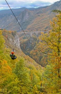 Ziplining over the deepest canyon in Europe. This Tara Canyon zip line is 1050 meters long. It starts at the Tara Canyon Estate farm stay and finishes down by the longest bridge in Monte. Montenegro, Zipline Adventure, Farm Stay, Exploring, Grand Canyon, Bridge, Europe, Tours, Nature