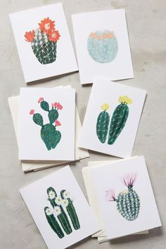 Succulent Card Set