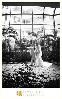 The Westin Tampa Harbour Island, Wedding, Bride and Groom, Limelight Photography www.stepintothelimelight.com