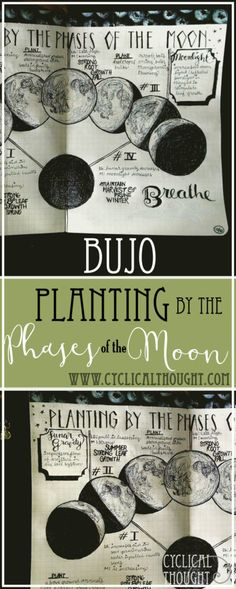 Moon Phase Planting Schedule | Bullet Journal Spread
