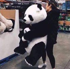 Desperately want it❤❤❤❤❤😍😍😍 Panda Day, Panda Love, Cute Panda, Panda Panda, Panda Bears, Big Teddy, Giant Teddy Bear, Cute Teddy Bears, Panda Kawaii