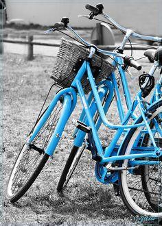 Les bicyclettes bleues by ~ƇƐSS~, via Flickr