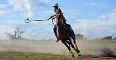 All the top men Polocrosse players came to Antelope Park for a social gathering. A weekend with a lot of speed and adrenalin! Horses, Park, Top, Horse, Parks, Crop Tee