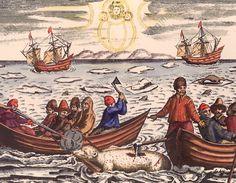 Barents, Willem ; navigateur hollandais ; v.1550–1597. Chasse à l'ours polaire. (Expédition pour découvrir le passage du nord-est, 1594 et suivantes). In : Gerrit de Veer, Waerachtighe Beschrijvinghe van die Seylagien (..), 1598. White Sea, Akg, Shipwreck, 17th Century, Rivers, Sailor, Image Search, Mermaid, Ocean