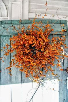 Roses and Rust: Pumpkin colours
