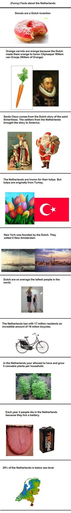Gotta love the Dutch // funny pictures - funny photos - funny images - funny pics - funny quotes - #lol #humor #funnypictures