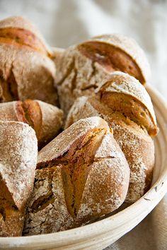 Nachdem ich von einigen Bäckern gelernt hatte, dass reine Einkorn-Teige in der Regel als Kastenbrote verbacken werden, war in mir der Ehrgeiz geweckt, es freigeschoben, also ohne stützende Form, zu probieren. Einkorn ist eine Abart des wilden Weizens, hat ein – milde ausgedrückt – ungünstiges Klebereiweißverhältnis, aber dafür einen hervorragenden Geschmack. Teige aus Einkorn sind nicht Weiterlesen...