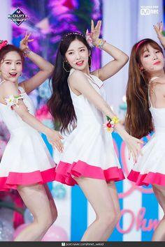 Kpop Girl Groups, Kpop Girls, Beautiful Asian Girls, Beautiful People, Girls Channel, Arin Oh My Girl, Kpop Girl Bands, Red Velvet Seulgi