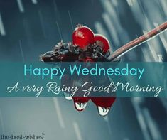 Fresh Rainy Day Images to wish Good Morning to your friends and family. Share these collection of best wishes with others in this season of rain. Good Morning Friends Quotes, Good Morning Messages, Good Morning Wishes, Good Morning Images, Morning Qoutes, Wednesday Morning Greetings, Good Morning Wednesday, Happy Wednesday, Wonderful Wednesday