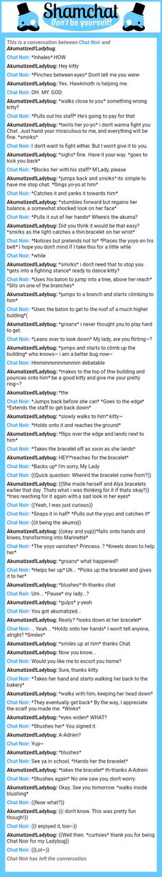 A conversation between Akumatized!Ladybug and Chat Noir