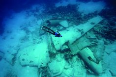 Free diving an airplane wreck. It's a DC-3/C-47 off Normans Cay, Bahamas.