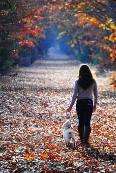 walking the dog in fall