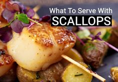 Sep 2018 - Not sure what to serve with scallops? Here are 20 of the best scallop side dishes for a flavorful meal any day of the week including vegetables, grains, and purees. Steak Side Dishes, Dinner Side Dishes, Best Side Dishes, Healthy Side Dishes, Vegetable Side Dishes, Side Dishes For Scallops, Scallop Dishes, Scallop Recipes, Side Recipes