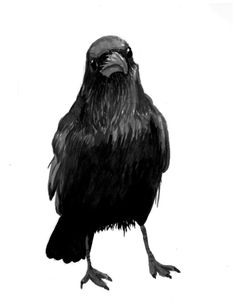 Crow (3) by Ginger Breo