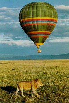 East Africa Safaris Balloon Safari  **