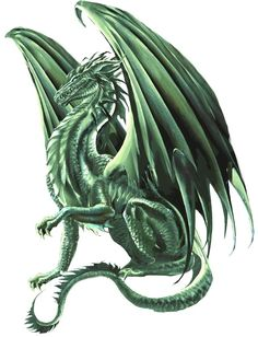 Ecosia - the search engine that plants trees Dragon Pictures, Art Pictures, Fantasy Creatures, Mythical Creatures, Emerald Dragon, Yin Yang Tattoos, Crystal Dragon, Dragon Head, Tiny Dragon