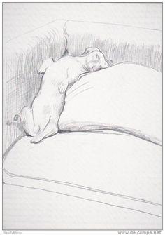 Photo Postcard - Dog - Artist Drawn - David Hockney - Dachshund