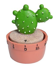 Prickly Pear Cactus Kitchen Timer Polyresin Potted Succulent for Home Décor by GIFTME 5 -- Find out more about the great product at the image link. (This is an affiliate link) Succulent Pots, Succulents, New Kitchen, Kitchen Dining, Egg Timer, Prickly Pear Cactus, Kitchen Timers, Food Hacks, Food Tips