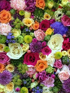 Wallpapers for iPhone and Android. Click the link below for Tech News n Gadget Updates. Diy Flowers, Colorful Flowers, Purple Flowers, Flower Pots, Beautiful Flowers, Wedding Flowers, Flowers Garden, Flower Wallpaper, Iphone Wallpaper