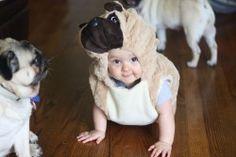 Is that a pug? lol too cute!!