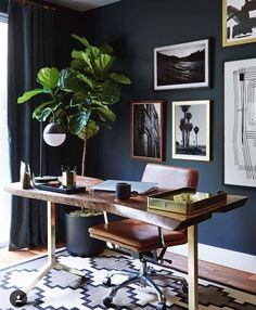 Rocking the look with a dark colored wall.