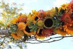 Plum Sage Flowers - Colorado