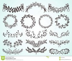 drawing laurels flower - Google Search