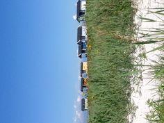 Skanör, Skåne Beach Huts, Helsingborg, Us Beaches, Provence, Places Ive Been, Sweden, Coastal, Archive, World