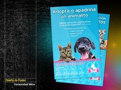 Diseño de Poster Comunidad Wow