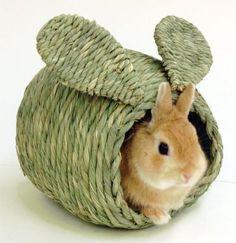 Bunny-adorable www.MadamPaloozaEmporium.com www.facebook.com/MadamPalooza