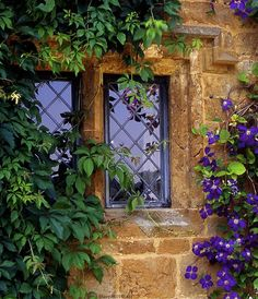 Beautiful old windows.
