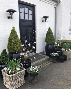 🌷It's time to say goodbye to the tulips in the baskets at my front door 🌷What to plant now?🤔 I don't want too many flowers, because I'm waiting for the hydrangea Annabelles to take the show in this garden room 🌸 . Sarah's Garden, Spring Garden, Water Garden, Dream Garden, Garden Landscaping, Front Garden Entrance, Beautiful Front Doors, Patio Plants, White Gardens
