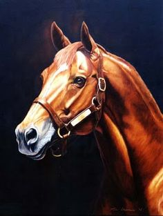 Secretariat, the greatest racehorse who ever lived.