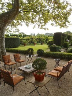 Big Game Hunting in Provence: The Amazing Gardens of Dominique LaFourcade | LA DOLCE VITA #ladolcevitacalifornia