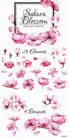Watercolor product with Sakura tree bloom in Japan. You will find here beautiful sakura blossoms, wreathes, bouquets, frames, seamless patterns and many other necessary things for your easy great design. You can use pre-made cards, compositions and elements for your unique DIY art.  #khanami #sakura #cherryblossoms #cherry #japanesegirl #watercolorpainting #satikaart