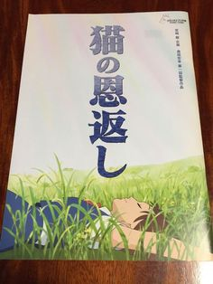 "Japanese Anime ""The Cat Returns"" Studio Ghibli Movie Book(Program) F/S The Cat Returns, Studio Ghibli Movies, Japanese, Cats, Books, Anime, Ebay, Gatos, Libros"