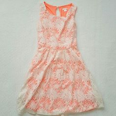 NWOT Lace Xhilaration dress Cute neon orange with lace overlay dress. Zipper on side and pearl button clasp in back. Fun and cute sundress! No tags but never worn! No trades. Offers welcome :) Xhilaration Dresses Mini