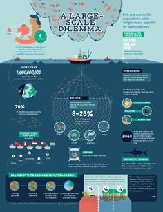 A Large Scale Dilemma - Fish and marine life populations are in danger as our appetite for seafood grows. - Infographic for Heifer
