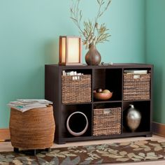 two of these next to each other would provide great storage (Target Home 6 Cube Horizontal Organizer, $80)