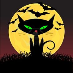 Spooky uitziende zwarte kat met groene ogen zitten onder het maan licht  Stockfoto
