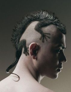 Amazing Lizard Haircut - Men's Hair